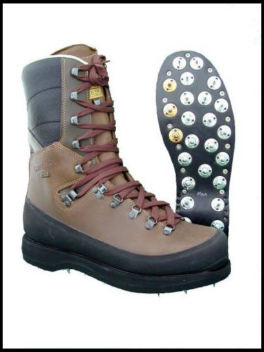 Danner Caulk Boots Boot Ri