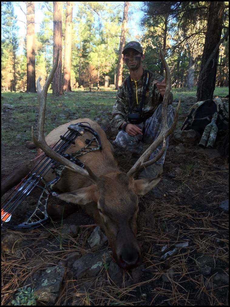 elk single guys Single shot rifle for hunting elk  to take a single-shot on an elk hunt  a 2nd shot is lower than the number of guys on this forum who hunt with a.