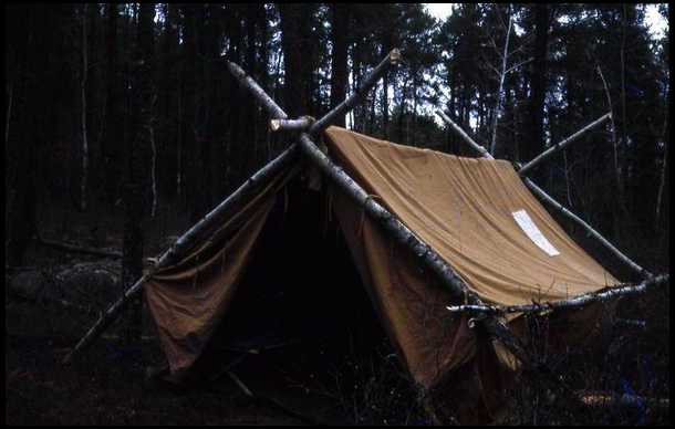Outfitter or wall tent??