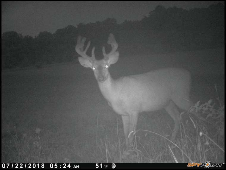 8point's embedded Photo