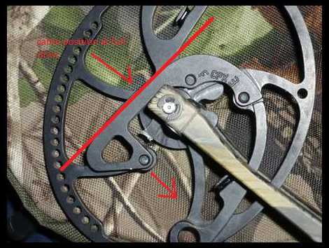 Update on My bowtech topic