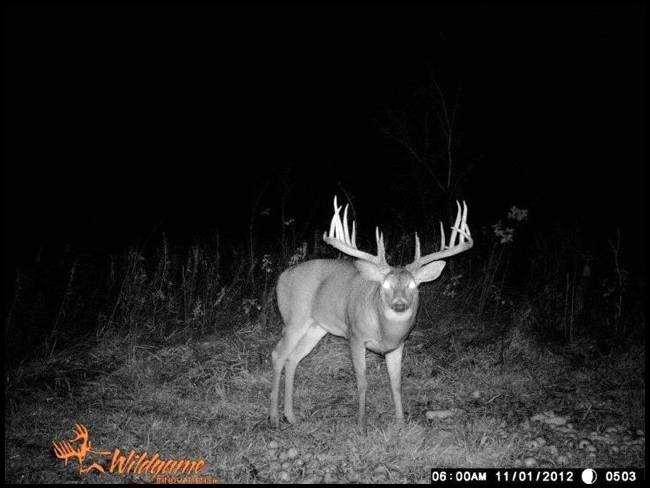 Ready to consistenly see bigger bucks??